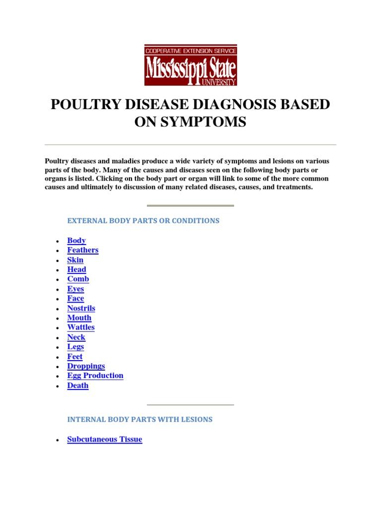 Diseases Poultry Diagnosis Symptoms | Hepatitis | Infection