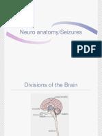 Neuro Anatomy Seizures