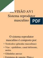 Revisão AV1 2012