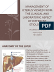 Management of Icterus Viewed From the Clinical And