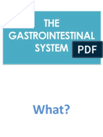 The Gastrointestinal System