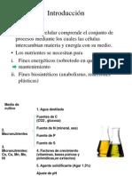 metabolismo_y_medios2