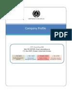 iSYS Company Profile QSI