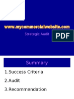 Strategic Audit of a Commercial Website