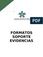 FORMATOS SOPORTES EVIDENCIAS