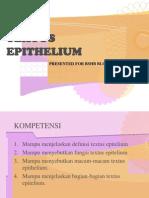 Textus Epithelium
