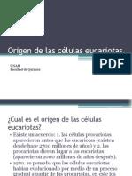 Origen de Las Celulas Eucariotas