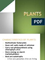 Plant '12