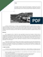 Aftosa complica a saúde financeira do Brasil
