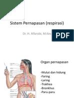 3. Sistem Pernapasan (respirasi)