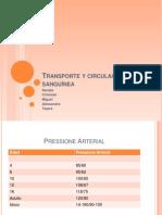 Transporte y circulación sanguínea