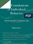 The Foundations of Individual Behaviorok 1233836438751814 2