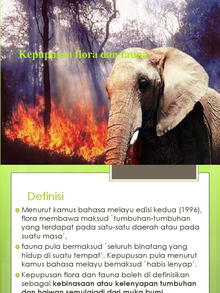 Definisi Flora Dan Fauna