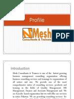 Mesh Consultants