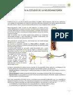 1_Introducción al estudio de la neuroanatomía