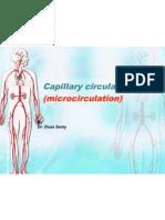 Capillary Cir - Copy