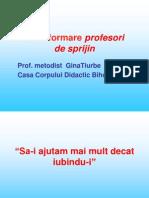 Formare Prof.sprijin