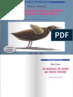 AS MOEDAS DE OURO DE PINTO PINTÃO
