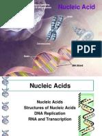 Nucliec Acid