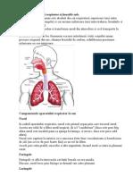 Anatomia Aparatului Respirator Si Functiile Sale