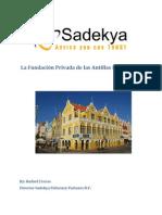 Descripción General De La Fundación Privada PDF