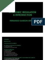 Introduccion a La Regulacion Economica