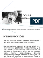 Presentacion SEMINARIO 2