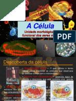 Aula1 2011-2012