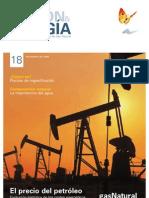 2010 - Gestión & Energía, Revista