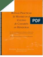 BPM camarón Honduras