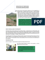 Mountain of Medicine - Arunachala Planting Project