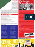 Anzeige DIE LINKE im Blickpunkt November 2008