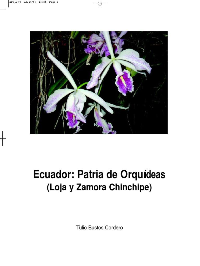 Ecuador Patria De Orquideas. Tulio Bustos