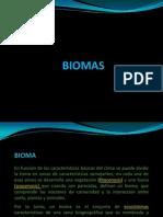 CLASE 03-Biomas
