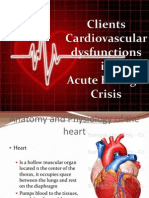 Clients Cardiovascular Dysfunctions