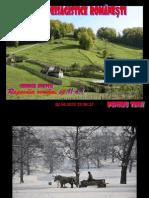 minuni peisagistice româneşti
