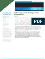 11 01 09 Implementing Basel III Whitepaper