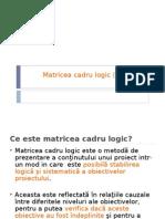 Matricea Cadrului Logic