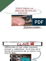 10-claves-inseminacio