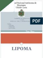 clinica_lipoma