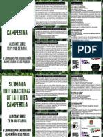 Tríptico DILC 2012 Alicante