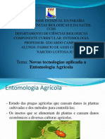 .Slides Entomologia