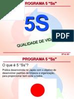 5 Ss  Programa de Qualidade e Padronização