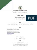plan_comercial piña