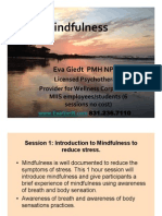 Mindfulness Based Stress Reduction Overview