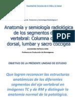 2. Anatomía y semiología radiológica de los segmentos del eje vertebral. Columna cervical, dorsal, lumbar y sacro coccígea