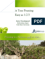 Pruning All Fruits