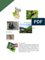 Ecologia San Martin