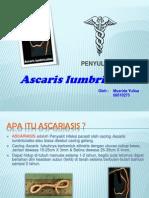Ascariasis by Muzrida