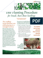Tree Planting Procedure for Small, Bare Root Seedlings
